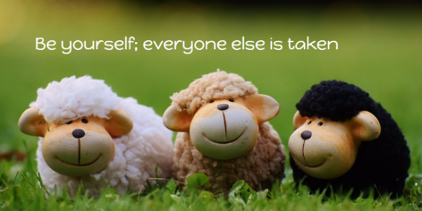 Be yourself, everyone else is taken - sheep image